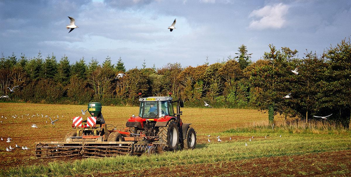 Andouar l agriculture bretonne photos de bretagne for L agriculture