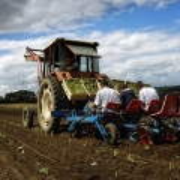 agriculture de bretagne andouar legumes