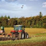 agriculture de bretagne andouar