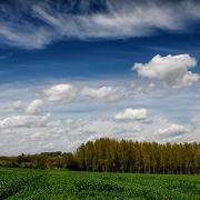 agriculture de bretagne andouar triticale